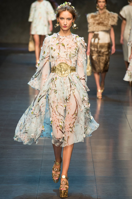 dolce and gabbana spring 2014 ready to wear 3